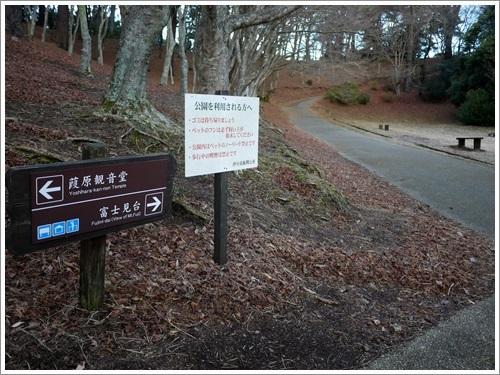 修善寺自然公園5