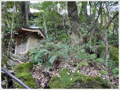 浄蓮の滝26