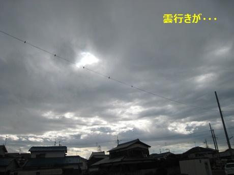 4雲行きが・・・