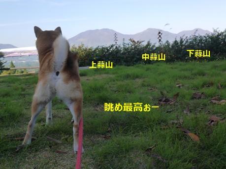 8蒜山高原