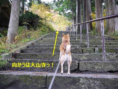 4階段を登る