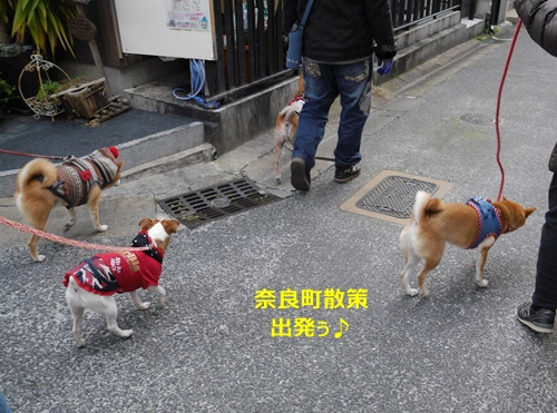 1奈良町お散歩