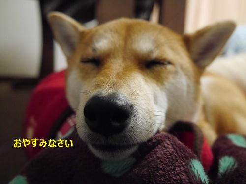 3おやすみ