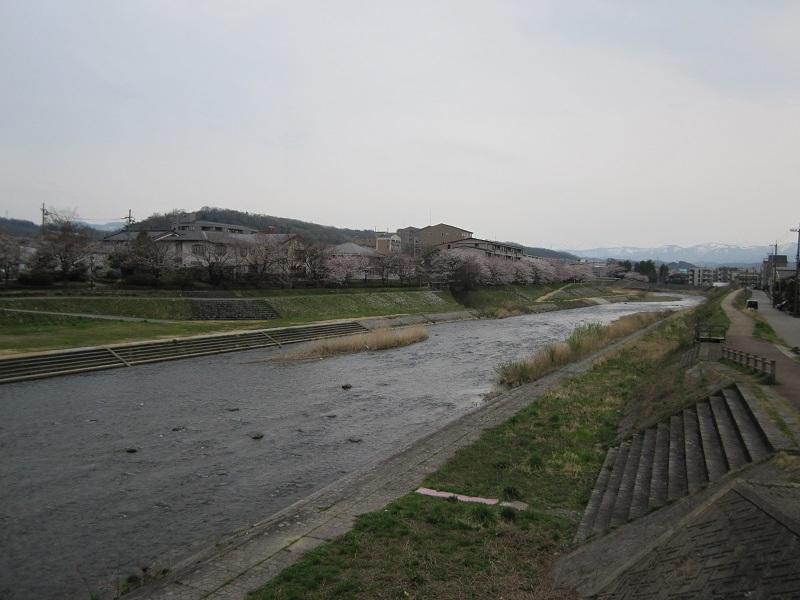 鈴見橋から旭橋までが一番です。