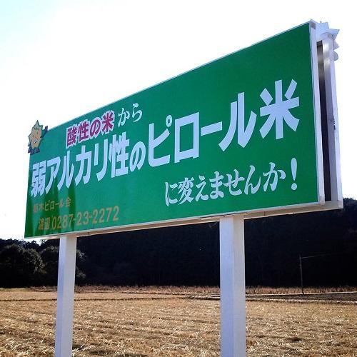 ピロール農法 欽ちゃん農場≪収穫祭≫⑭