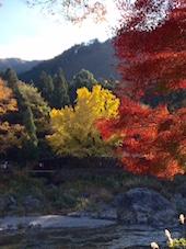 2014御岳渓谷
