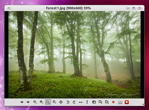 GPicView Ubuntu 画像ビューア