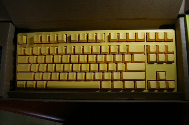 DuckyShine3-Yellow_08.jpg