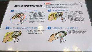 仙台旅行_08