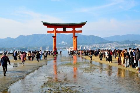 miyajima131116013.jpg