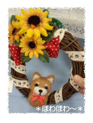 柴犬リース