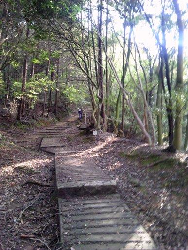 このような山道をひたすら25分ほど登ります(舗装してないところも)