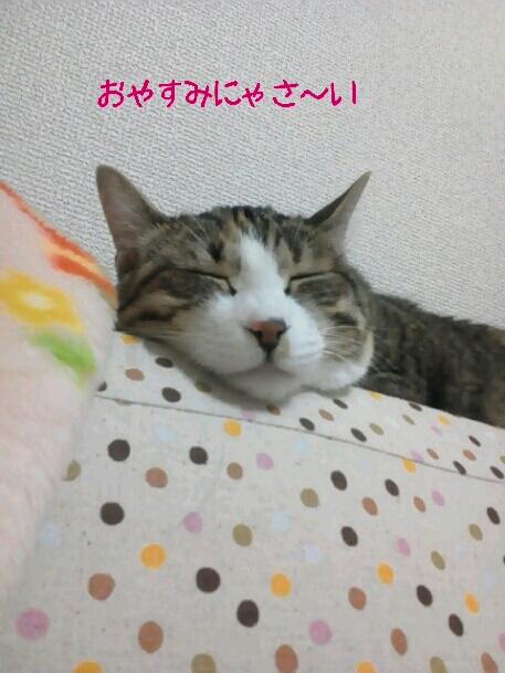 fc2_2013-06-17_00-48-20-148.jpg