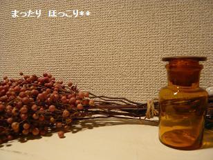 001_20101203224112.jpg