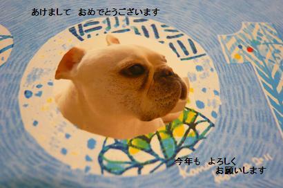 001_20110102225804.jpg