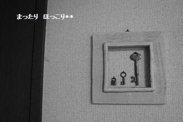 003_20110104131938.jpg