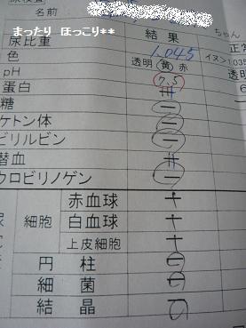 011_20110816223626.jpg