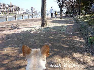 01_20110331164331.jpg