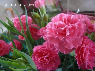 01_20110504112915.jpg