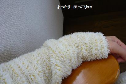 02_20101027091003.jpg