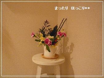 02_20101230174002.jpg