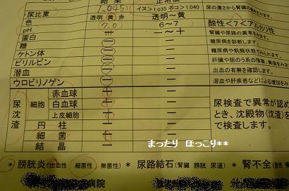 04_20100715110524.jpg