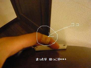 04_20110101001924.jpg