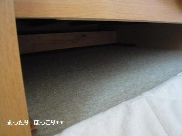 04_20110331164332.jpg
