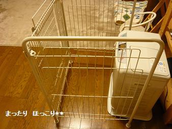 12_20110106212022.jpg