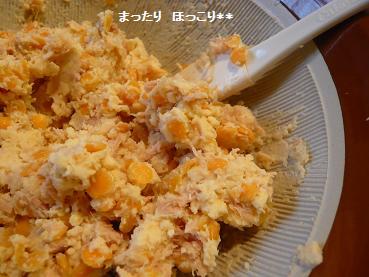 12_20110121190800.jpg