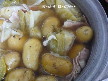 キャべツ鍋