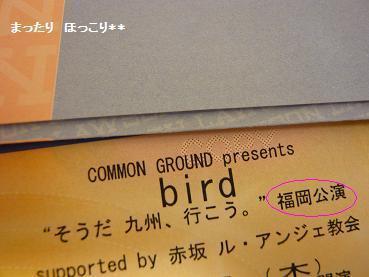 チケット0