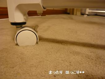 4_20110106131427.jpg
